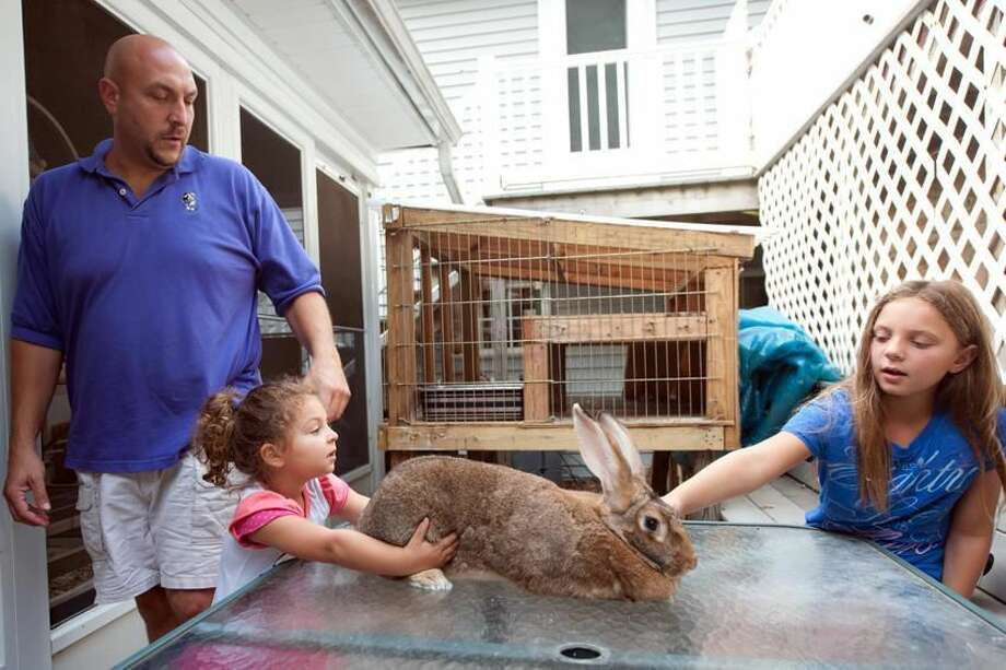 Josh Lidsky, Madison, 3, and Kayden 7, of 53 Susan Lane in North Haven pet Sandy the bunny. Sandy is at the center of a blight snafu involving the family, the bunny and town officials. VM Williams/Register