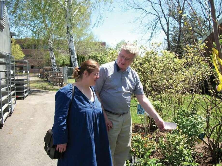Photo by Lynn Fredricksen Sarah Ruden and her husband, Tom Conroy, select a blueberry bush for their Hamden yard.