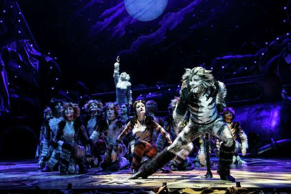 Dan Hoy as Munkustrap and the cast of the musical 'Cats' that's coming to Houston (2019).