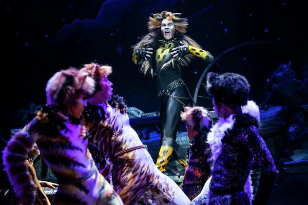 McGee Maddox in the touring version of 'Cats' coming to Houston (2019)