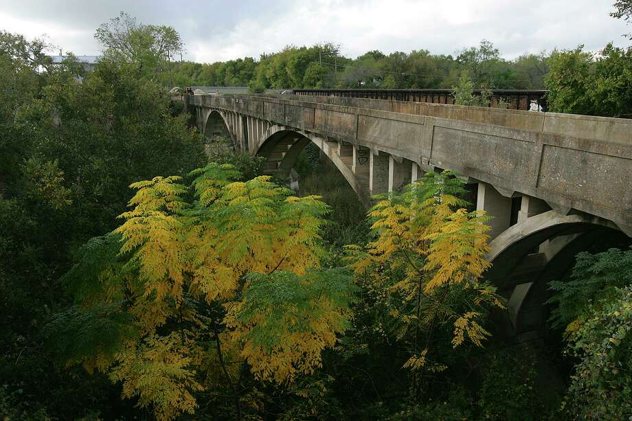 Chinaberry trees change color with the coming of fall along the Medina River and the old Kings Road Bridge in South Bexar County. It's important to note that all parts of the chinaberry tree are poisonous to humans. Photo: JERRY LARA, STAFF / SAN ANTONIO EXPRESS-NEWS / SAN ANTONIO EXPRESS-NEWS