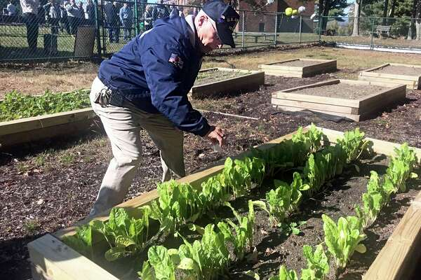 A ribbon-cutting was held Tuesday at the Veteran's Memorial Natural Garden at Middlesex Community College in Middletown. Here, Common Councilman Phil Pessina sprinkles sand from five beaches in Normandy on the beds to honor veterans.