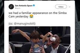 We had a familiar appearance on the Simba Cam yesterday. (cc: @manuginobili)