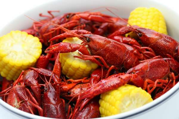boiled crawfish, clayish party, close up