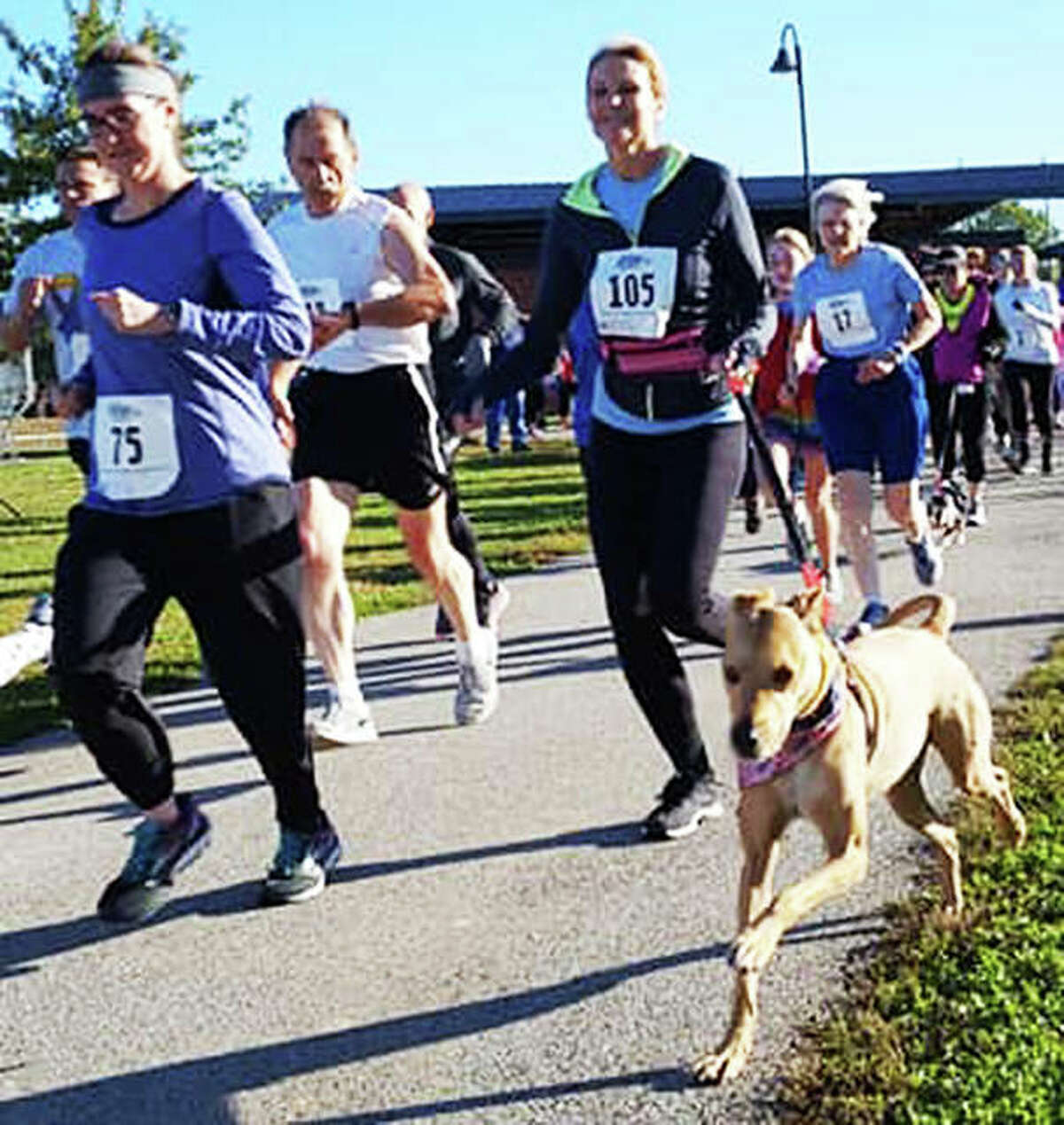 Hope Animal Rescues' 7th Annual Run for Rescue is planned 8 a.m. to 2 p.m. Saturday, Oct. 19, at the Liberty Bank Amphitheater in Alton. The file photo is from a previous year of the event.