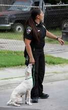 Animal Care Services Field Supervisor Aimee DeContreras holds a sick stray young dog as she talks with other officers during a block walk. The officers were block walking in neighborhoods on the west side of San Antonio to distribute educational material to residents on Friday, July 31, 2015.