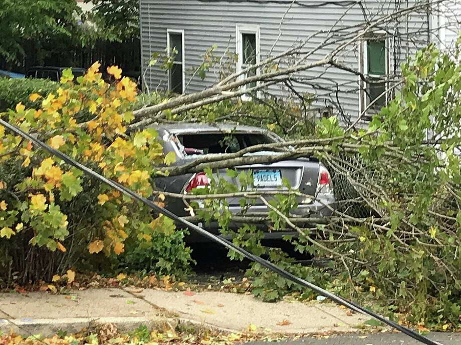 A downed tree smashed a car on Chestnut Street in Stamford on Thursday, Oct. 17, 2019. Photo: John Nickerson /Hearst Connecticut Media