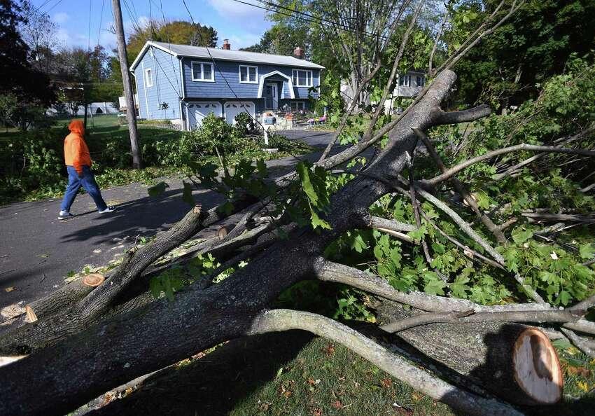 A tree fallen across powerlines blocks dead end West Shore Drive in Milford, Conn. on Wednesday, October 16, 2019.