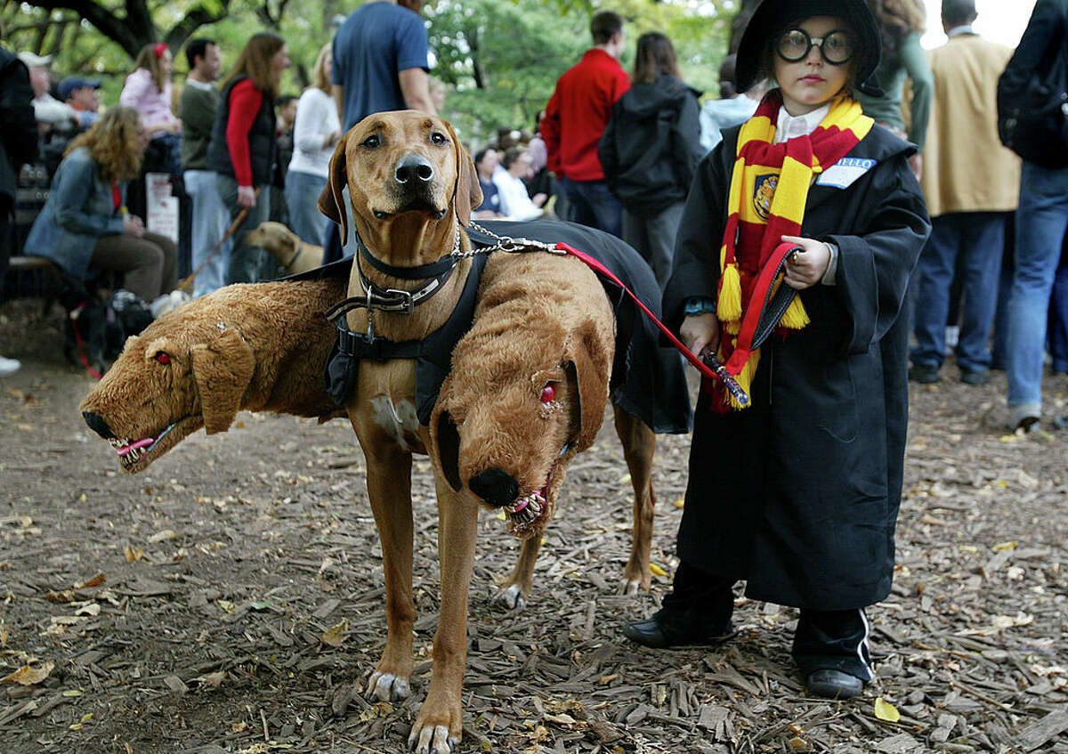 Popluxe Brewing prepares to host its Howl-o-Ween costume contest -- for dogs, that is. Keep clicking for more on Seattle's Halloweens from the past.