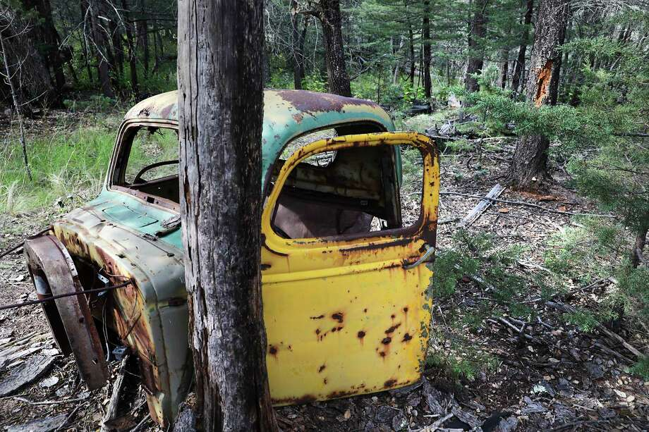 Abandoned truck cabs used for a logging company have been discarded in Reserva El Carmen in Coahuila, Mexico. At right is a bear marking high on a pine tree. Photo: Bob Owen, Staff Photographer / ©2019 San Antonio Express-News