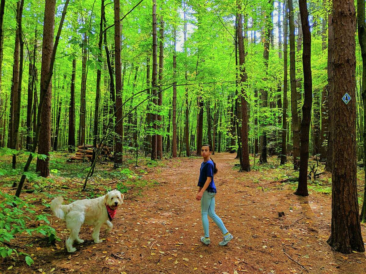 In September the Boswell family took a hike on the trails at Clifton Park's Kinns Road Park, a trip that included their one-year-old golden doodle Murphy and their daughter Chloe. (Robert Boswell Jr)