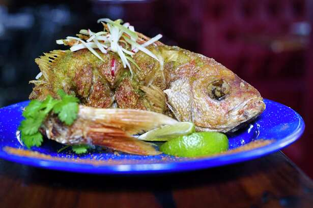 A whole yellowtail snapper, at Tatu Tacos & Tequila on Wednesday, Oct. 9, 2019, in Saratoga Springs, N.Y. (Paul Buckowski/Times Union)