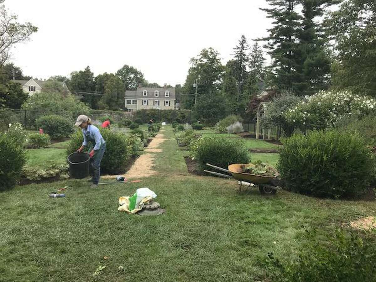 Garden Club Chair Janet Bruehlman working during the renovation.