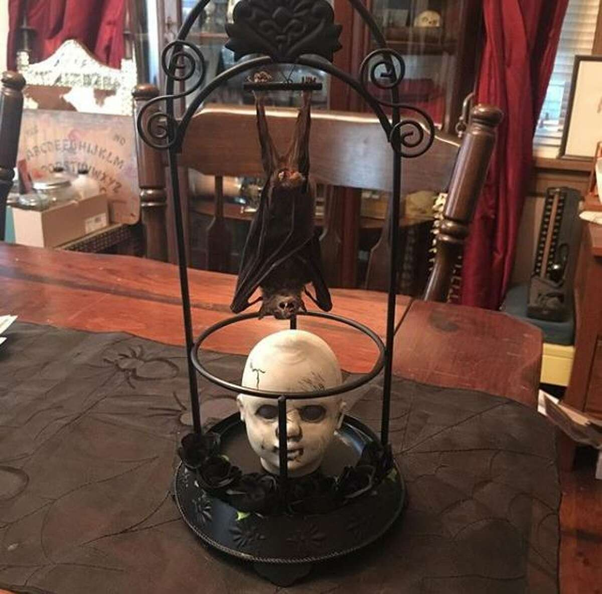 Part of Dominic Picarillo's collection of oddities.