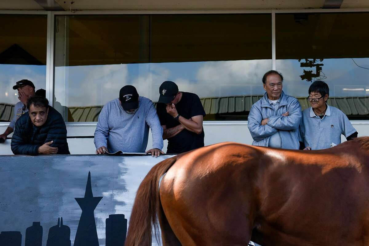 Attendees of the horse races studying the program and observing the horses at Golden Gate Fields on October 18, 2019 in Oakland, Calif.