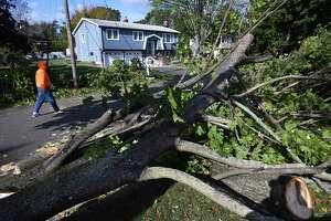 A tree fallen across power lines blocks dead end West Shore Drive in Milford on Thursday.