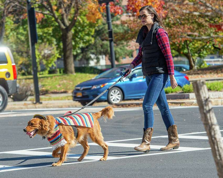 Whitney Braunlin, of Delmar, walks Watson across Pearl Street during the Hounds of Halloween3, a benefit hosted by the Albany Business Improvement District where dogs and their owners trick-or-treat through downtown Albany to benefit the Mohawk Hudson Humane Society on Saturday, Oct. 19, 2019 (Jim Franco/Special to the Times Union.)