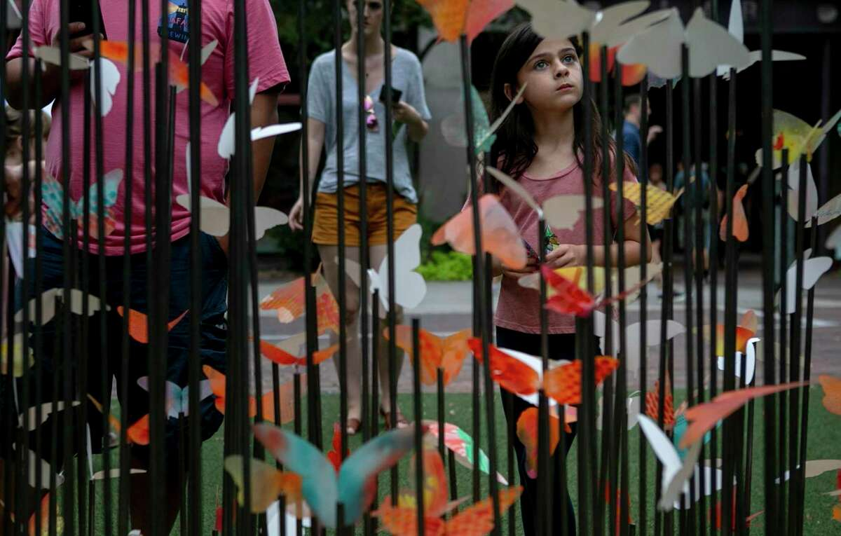 A young attendee takes in a butterfly display at last year's Monarch Butterfly and Pollinator Festival.