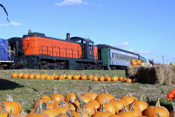 Visitors can take a short ride on a vintage train to the Danbury Railway Museum's pumpkin patch Oct. 12 and 13. This popular family event continues Oct. 19, 20, 26 and 27.