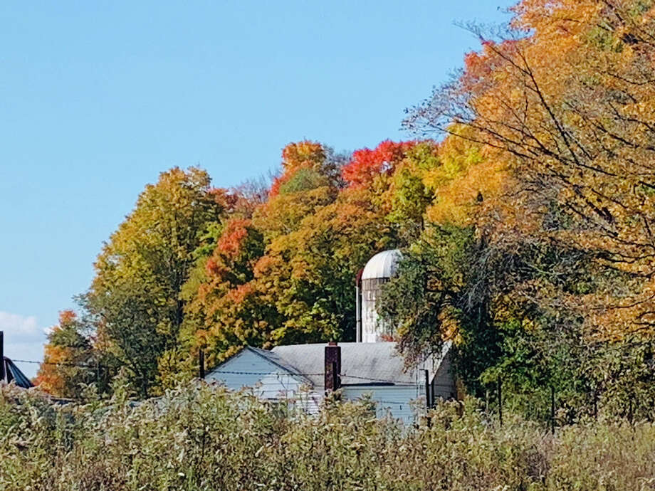 Autumn scenes from Midland and Gladwin counties. Photo: Fred Kelly/fred.kelly@mdn.net