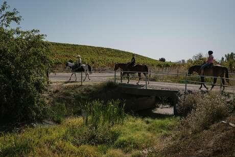 Christine Fife, left, leads Danielle Mulas and Janey Mulas on a horseback ride through Alta Vista Vineyards in Sonoma, Calif. on Sunday, Oct. 13, 2019.