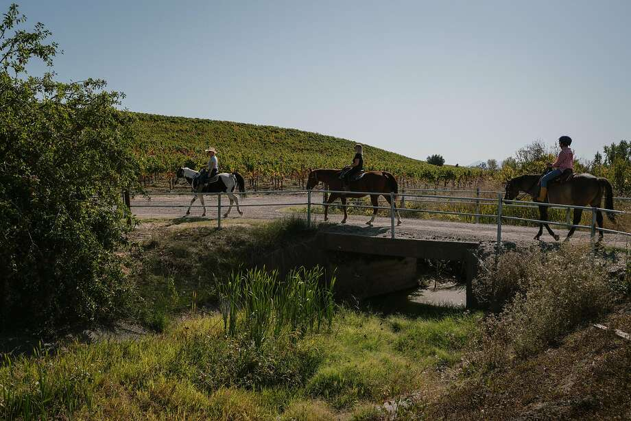 Christine Fife, left, leads Danielle Mulas and Janey Mulas on a horseback ride through Alta Vista Vineyards in Sonoma, Calif. on Sunday, Oct. 13, 2019. Photo: Sarahbeth Maney / Special To The Chronicle