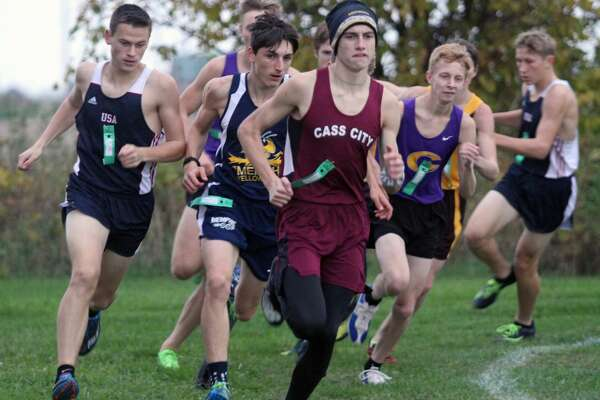 Area cross country teams made strong showings recently at D3 regionals at Shepherd High School.