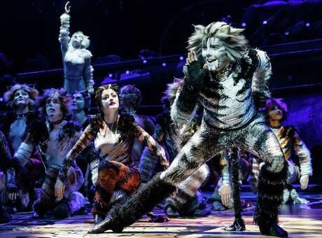 """Dan Hoy plays Munkustrap in the touring company of """"Cats"""" that is coming to the Majestic Theatre."""