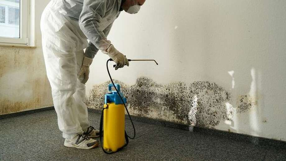 How to Control Moisture and Humidity in the Home