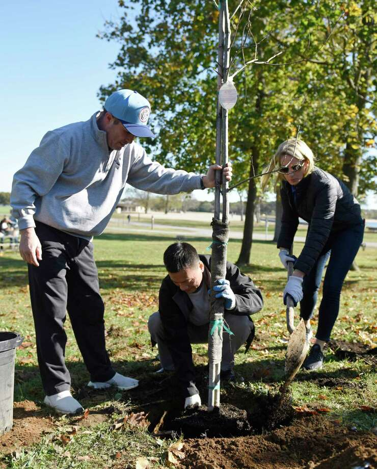 Xylem CEO Patrick Decker, left, and fellow employees Eddie Zhang and Jamie Saxe plant trees in partnership with Keep America Beautiful at Cove Island in Stamford, Conn. Wednesday, Oct. 23, 2019. The water technology company Xylem made a donation to the Stamford non-profit Keep America Beautiful and employees volunteered their time to plant 27 trees at Cove Island on Wednesday. Photo: Tyler Sizemore / Hearst Connecticut Media / Greenwich Time