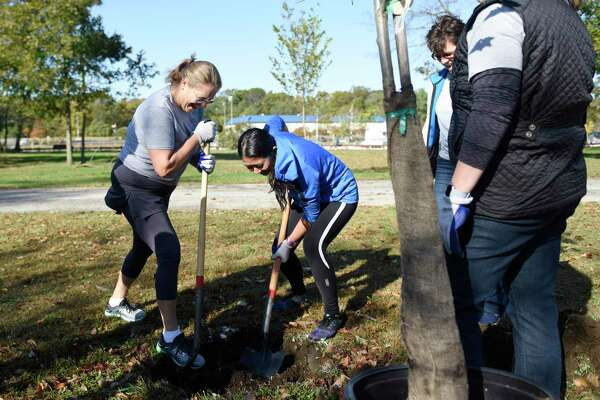 Xylem employees Rhonda McKeever, left, and Shan Jarvis plant trees in partnership with Keep America Beautiful at Cove Island in Stamford, Conn. Wednesday, Oct. 23, 2019. The water technology company Xylem made a donation to the Stamford non-profit Keep America Beautiful and employees volunteered their time to plant 27 trees at Cove Island on Wednesday.