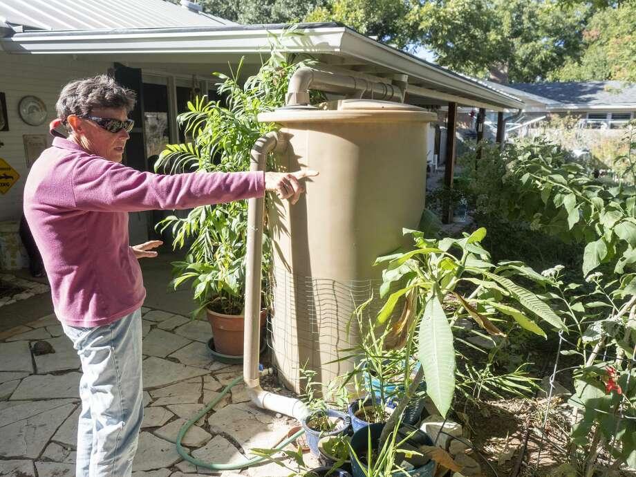Emmy Ulmschneider talks about her yard, filled with vegetables, native plants, flowering plats for native pollinators and a spacious chicken coup. 10/23/19 Tim Fischer/Reporter-Telegram Photo: Tim Fischer/Midland Reporter-Telegram