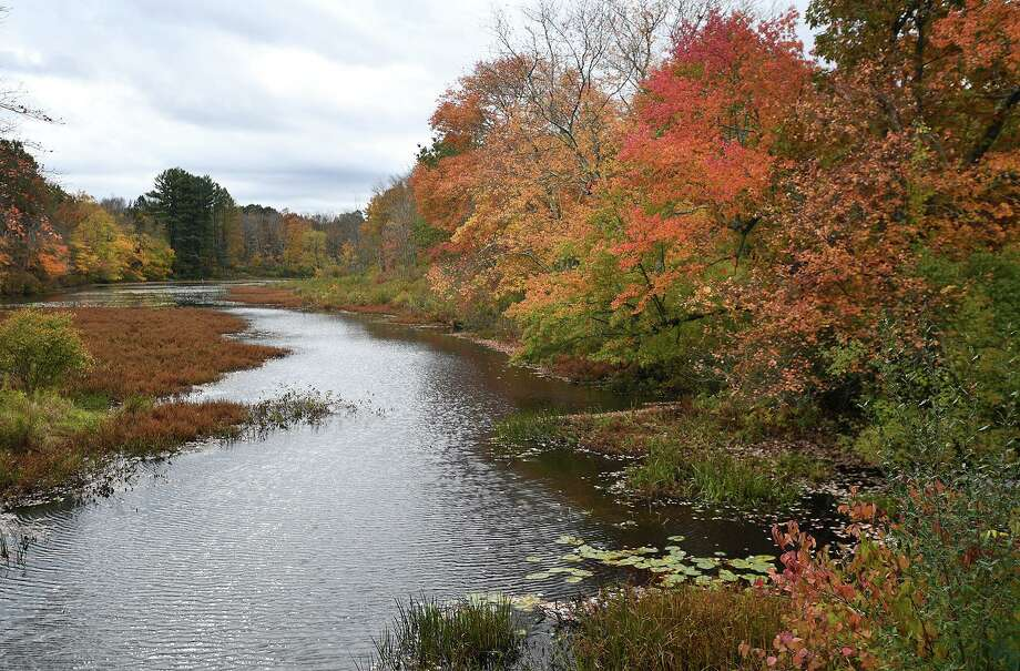 Colorful fall foliage highlights the banks of the Eightmile Brook in Oxford, Conn. recently. Photo: Brian Pounds / Hearst Connecticut Media / Connecticut Post