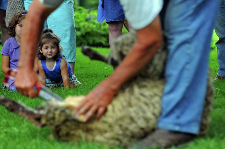 Miriam Evans, 2, of Lake Luzerne and her sister Madison, 6, partially obscured at left, watch Fred DePaul of Plymouth, Vt., give a 1-year-old sheep its first shearing during the 18th Century Day at the Historic Schuyler House in Schuylerville on Sunday, Aug. 8, 2010.   ( Philip Kamrass / Times Union ) Photo: PHILIP KAMRASS