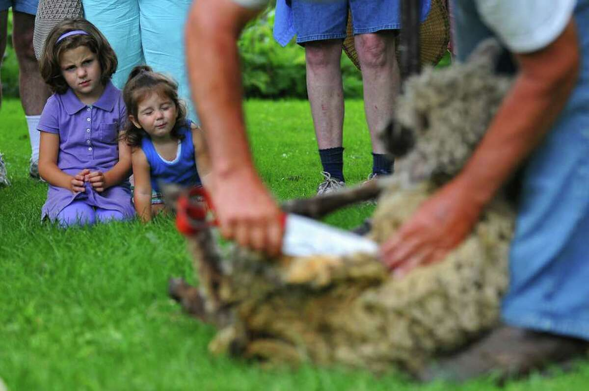 Miriam Evans, 2, of Lake Luzerne and her sister Madison, 6, partially obscured at left, watch Fred DePaul of Plymouth, Vt., give a 1-year-old sheep its first shearing during the 18th Century Day at the Historic Schuyler House in Schuylerville on Sunday, Aug. 8, 2010. ( Philip Kamrass / Times Union )