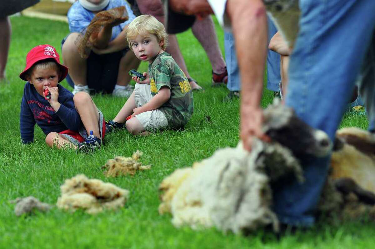 Three-year-olds Henry Kelleher of Quaker Springs, left, and Aiden Wozniak of Schuylerville watch Fred DePaul of Plymouth, Vt., give a 1-year-old sheep its first shearing during the 18th Century Day at the Historic Schuyler House in Schuylerville on Sunday, Aug. 8, 2010. ( Philip Kamrass / Times Union )