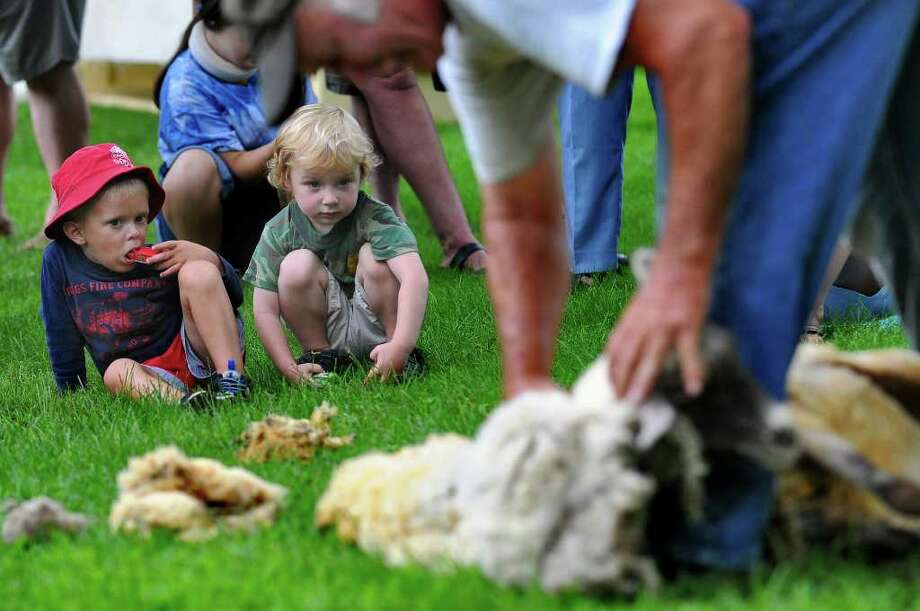 Three-year-olds Henry Kelleher of Quaker Springs, left, and Aiden Wozniak of Schuylerville watch Fred DePaul of Plymouth, Vt., give a 1-year-old sheep its first shearing during the 18th Century Day at the Historic Schuyler House in Schuylerville on Sunday, Aug. 8, 2010.   ( Philip Kamrass / Times Union ) Photo: PHILIP KAMRASS