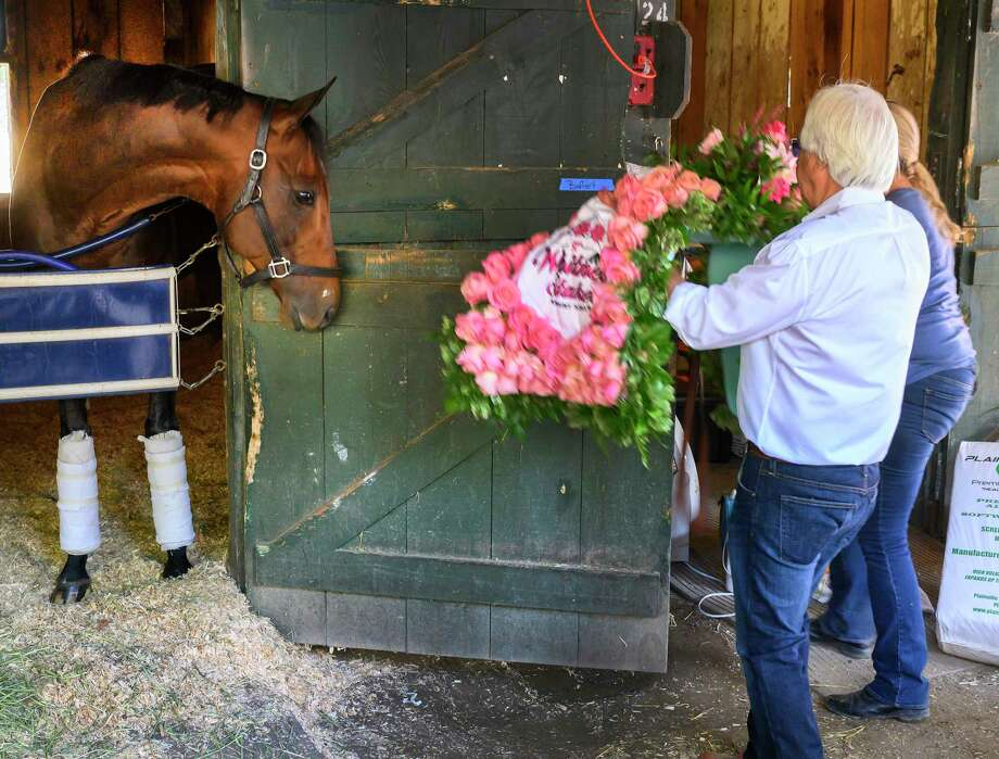 McKinzie takes a good look at the winnerA•s blanket of roses the morning after his win in The Whitney at the Saratoga Race Course Sunday, Aug. 4, 2019 in Saratoga Springs, N.Y.  Photo Special to the Times Union by Skip Dickstein