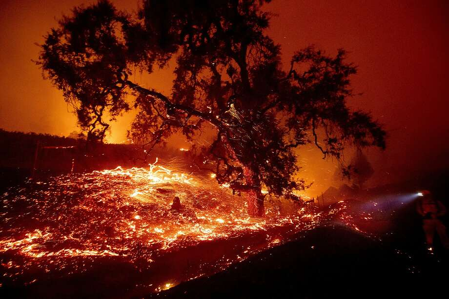 Embers fly from a tree as the Kincade Fire burns near Geyserville, Calif., on Thursday, Oct. 24, 2019. Portions of Northern California remain in the dark after Pacific Gas & Electric Co. cut power to prevent wildfires from sparking during dry and windy conditions. (AP Photo/Noah Berger) Photo: Noah Berger, Associated Press