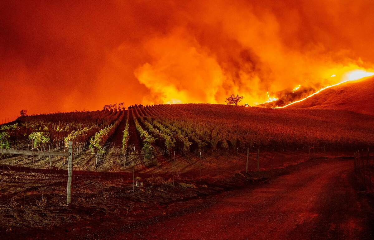 Flames approach rolling hills of grape vines during the Kincade fire near Geyserville, California on October 24, 2019. - The fire broke out in spite of rolling blackouts by utility companies in both northern and Southern California. (Photo by Josh Edelson / AFP) (Photo by JOSH EDELSON/AFP via Getty Images)