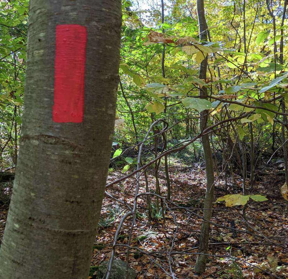 The next trails work party will be Saturday, Oct. 26, at Shelton's Boehm Pond. Photo: Contributed Photo / Connecticut Post