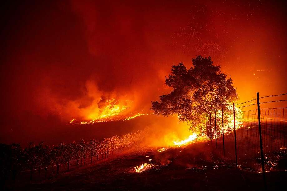 Flames enter a vineyard during the Kincade fire near Geyserville, California on October 24, 2019. - fast-moving wildfire roared through California wine country early Thursday, as authorities warned of the imminent danger of more fires across much of the Golden State. The Kincade fire in Sonoma County kicked up Wednesday night, quickly growing from a blaze of a few hundred acres into an uncontained 10,000-acre (4,000-hectare) inferno, California fire and law enforcement officials said. (Photo by Josh Edelson / AFP) (Photo by JOSH EDELSON/AFP via Getty Images) Photo: Josh Edelson, AFP Via Getty Images