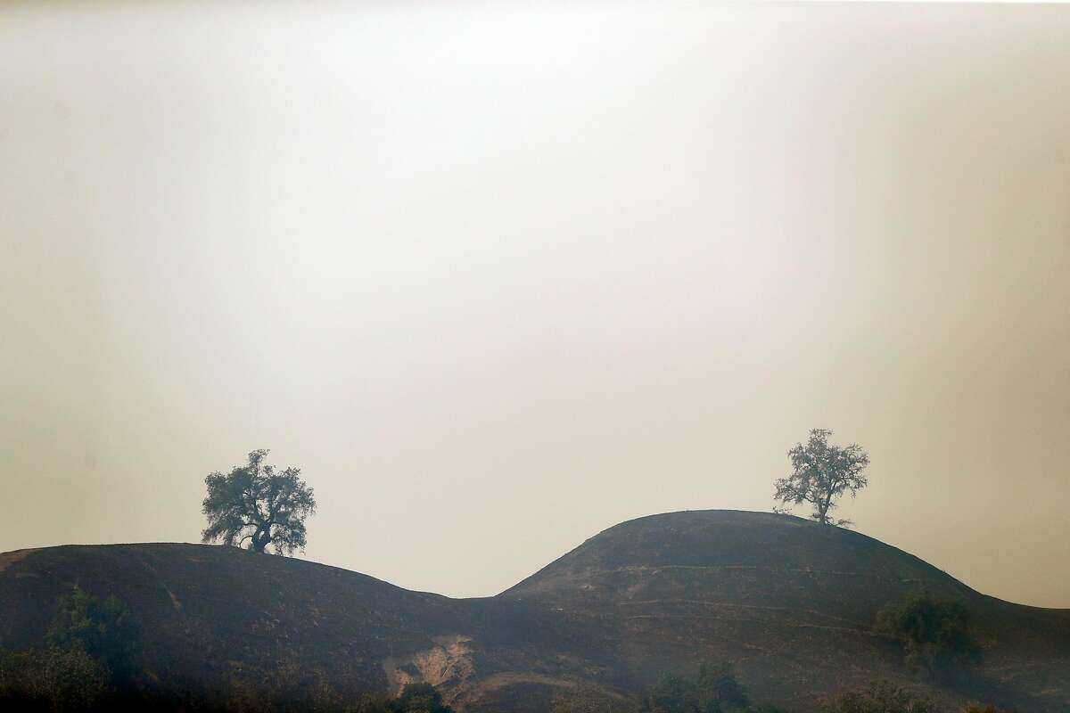 Two tress in the smoke on Geyser Peak during Kincaid Fire in Geyserville, Calif., on Thursday, October 24, 2019.