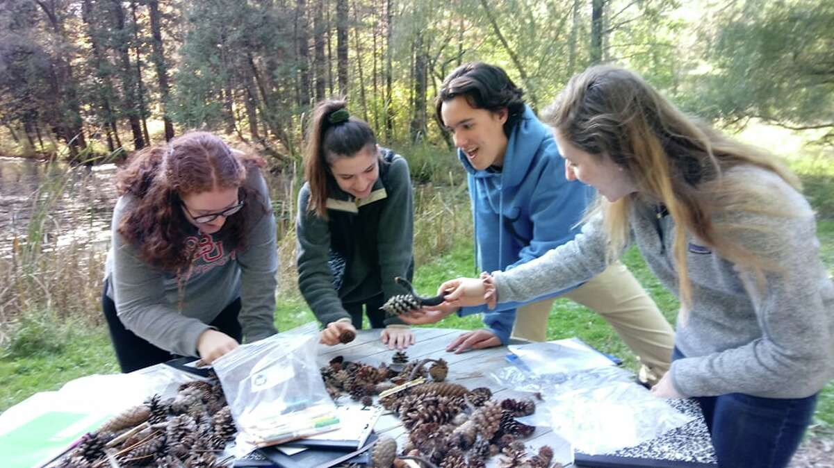 Students from Bethlehem Central High School participate in an innovative educational program with the Pine Hollow Arboretum in which they go through a training program and then teach local elementary students about the arboretum and its ecosystem.