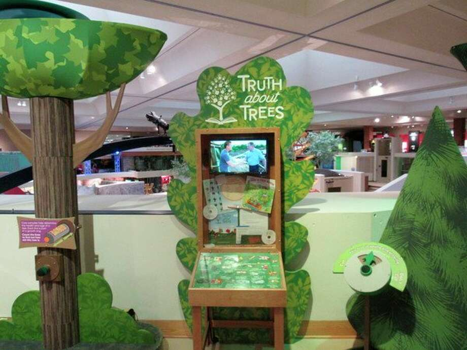 Visitors can learn about the role of trees in their natural environment at the Forever Forest exhibit. (Victoria Ritter/vritter@mdn.net)
