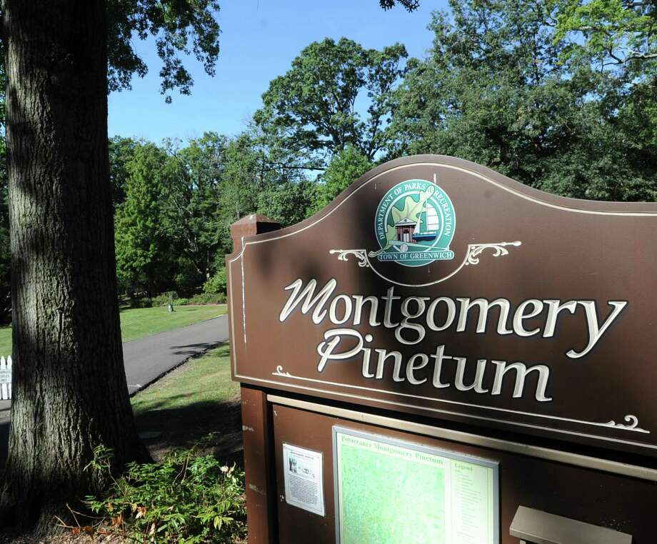 Lisa Beebe, director of horticulture of the Greenwich Botanical Center, will lead a Historical Walk in the Montgomery Pinetum to show how the landscape has changed over the past 75 years. The free event is at 2 p.m. Wednesday at the GBC at 130 Bible St. Photo: Hearst Connecticut Media File Photo / Greenwich Time