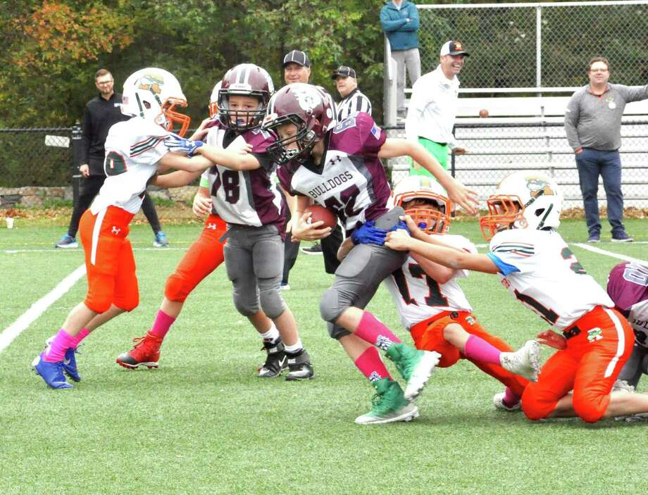 Bantam Bulldog Danny Insinga (78) blocks for Anders Hildebrand (62). Photo: Contributed Photo / Greenwich Time Contributed
