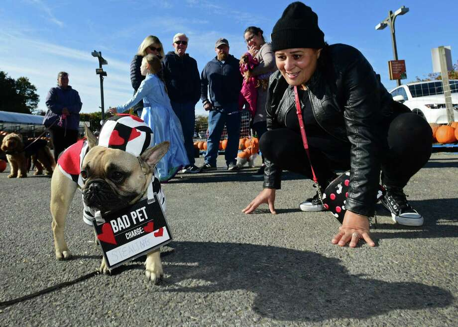 Stamford resident Nayda Recions and her dog, Finnegan, join other customers as they bring their costumed dogs to Stew Leonard's Barkfest event on Saturday at the store in Norwalk. Customers brought their pups dressed in Halloween costumes and entered for a chance to win a Bubba's Barkery Gift Basket valued at $100 containing fresh dog treats made in-house at Stew Leonard's. The shoppers were kindly asked to bring a small bag or can of dog food for a donation to the local pet shelter. Photo: Erik Trautmann / Hearst Connecticut Media / Norwalk Hour