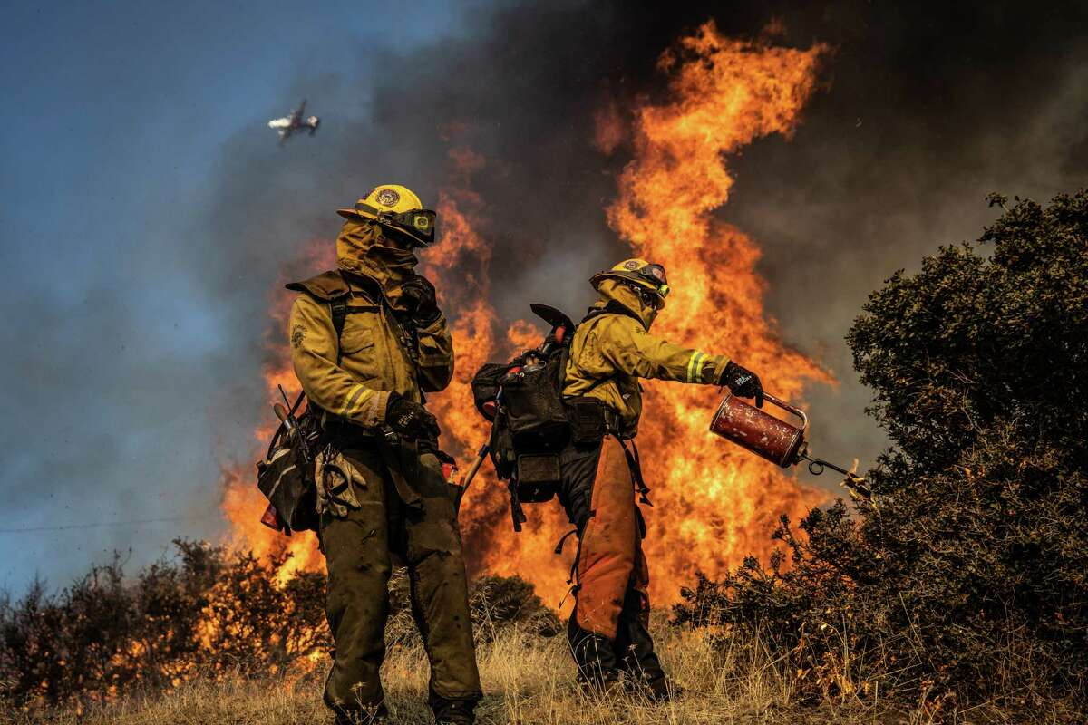 Firefighters burn brush ahead of the Kincade Fire in an effort to reduce fuel and increase containment in the Geysers, a geothermal field in California, Oct. 25, 2019. With winds forecast to reach 80 mph Saturday night, Pacific Gas and Electric plans to cut power to as many as 850,000 customers. (Max Whittaker/The New York Times)
