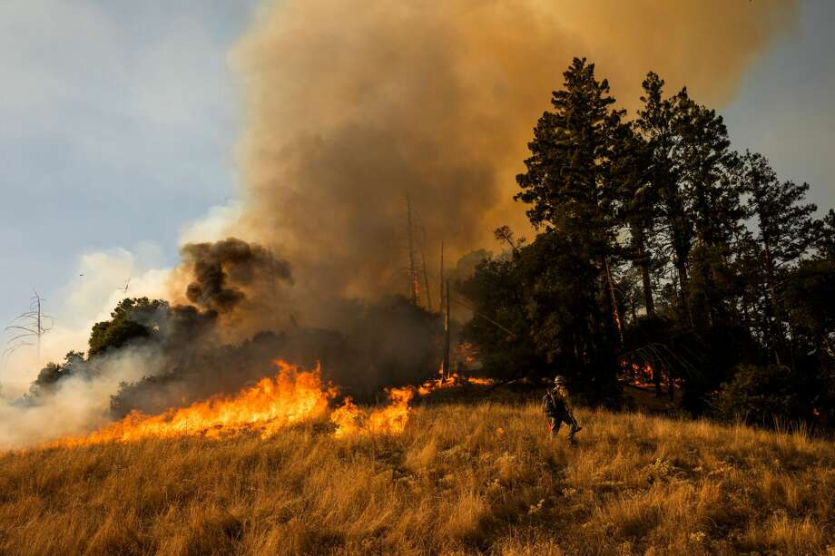 A firefighter sets a back fire along a hillside during firefighting operations to battle the Kincade Fire in Healdsburg, California on October 26, 2019. - US officials on October 26 ordered about 50,000 people to evacuate parts of the San Francisco Bay area in California as hot dry winds are forecast to fan raging wildfires. Photo: PHILIP PACHECO/AFP Via Getty Images